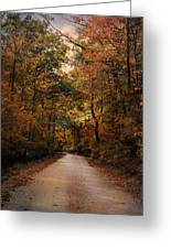 Wrapped In Autumn Greeting Card by Jai Johnson