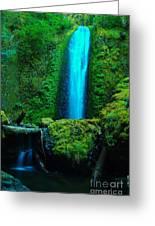 Wyeth Creek Falls Greeting Card by Jeff  Swan