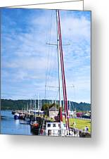 Yacht Greeting Card by Svetlana Sewell