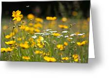 Yellow And White Greeting Card by Ron Smith