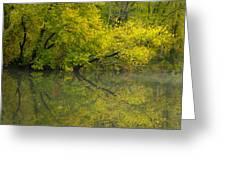 Yellow Autumn Greeting Card by Karol  Livote