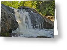 Yellow Dog Falls 4192 Greeting Card by Michael Peychich