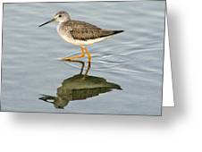 Yellow Leg Reflection Greeting Card by Paulette Thomas