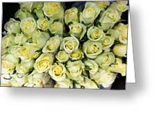 Yellow Roses Greeting Card by Anna Villarreal Garbis