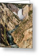 Yellowstone Falls From Artists Point Greeting Card by Greg Nyquist