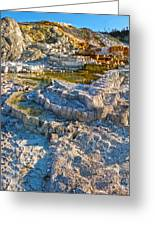 Yellowstone National Park - Mammoth Hot Springs - 02 Greeting Card by Gregory Dyer
