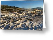 Yellowstone National Park - Minerva Terrace - 07 Greeting Card by Gregory Dyer