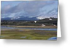 Yellowstone Vista 10 Greeting Card by Charles Warren