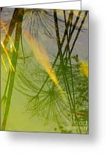 Yin Greeting Card by Robert Hooper