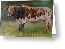 Young Bull Greeting Card by Mary Leslie