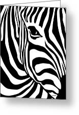 Zebra Greeting Card by Ron Magnes