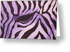 Zebra Greeting Card by Sandy Tracey