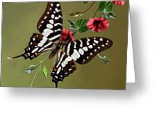 Zebra Swallowtail Butterfly Greeting Card by Thanh Thuy Nguyen