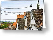 Zemun Rooftops In Belgrade Greeting Card by Elena Elisseeva