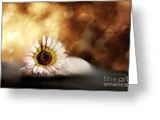 ZEN Greeting Card by VIAINA Visual Artist