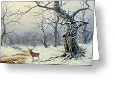A Stag In A Wooded Landscape  Greeting Card by Nils Hans Christiansen