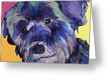 Beau Greeting Card by Pat Saunders-White