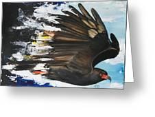 Everglades Snail Kite Greeting Card by Anthony Burks Sr