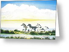 Indian Ponies Greeting Card by Jerome Stumphauzer