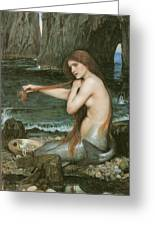 A Mermaid Greeting Card by John William Waterhouse