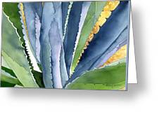 Agave 2 Greeting Card by Eunice Olson