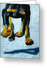 All Fours Greeting Card by Linda Apple