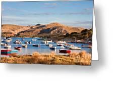 Anavyssos Bay Greeting Card by Gabriela Insuratelu