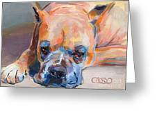Andre Greeting Card by Kimberly Santini