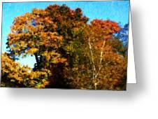 Autumn Leaves Greeting Card by David Lane