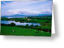 Bantry Bay, Co Cork, Ireland Greeting Card by The Irish Image Collection