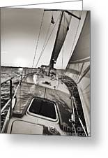 Beneteau 49 Sailing Yacht Close Hauled Charleston Sunset Sailboat Greeting Card by Dustin K Ryan