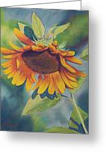 Big Sunflower Greeting Card by Billie Colson