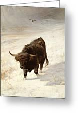 Black Beast Wanderer Greeting Card by Joseph Denovan Adam