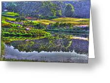 Color and Fog Greeting Card by Robert Pearson