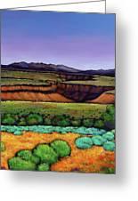 Desert Gorge Greeting Card by Johnathan Harris
