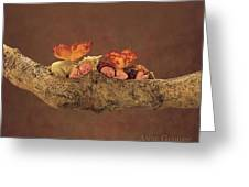 Fairies Greeting Card by Anne Geddes