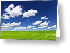 Green Rolling Hills Under Blue Sky Greeting Card by Elena Elisseeva