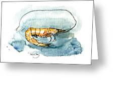Gulf Shrimp Greeting Card by Paul Gaj