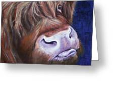 Highland Cow Greeting Card by Fiona Jack