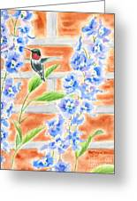 Hummer And Delphiniums Greeting Card by Kathryn Duncan
