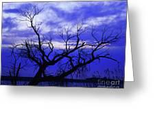 Lone Tree Blues Greeting Card by Terril Heilman