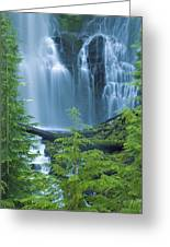 Lower Proxy Falls Greeting Card by Greg Vaughn - Printscapes