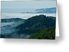 Mist Over Apuseni Greeting Card by Gabriela Insuratelu
