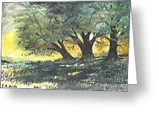 Old Oaks Greeting Card by Patrick Grills