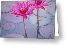 Pink Lily Blossom Greeting Card by Ron Dahlquist - Printscapes