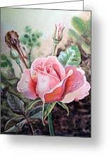 Pink Rose With Dew Drops Greeting Card by Irina Sztukowski