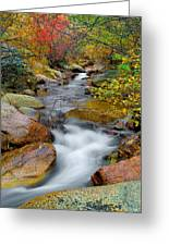 Rock Creek Greeting Card by Tim Reaves