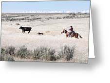Round Up Greeting Card by Cindy Singleton