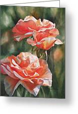 Salmon Colored Roses Greeting Card by Sharon Freeman