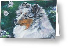 Shetland Sheepdog Greeting Card by Lee Ann Shepard